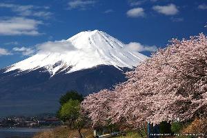 楽しく行こっ♪ 富士の山    登ってみたい         恋人と  若い日を思い出します^^ うささん、みりんさ