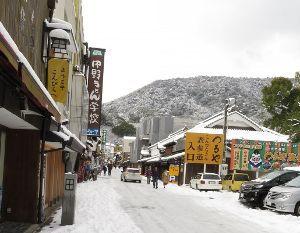大正生まれです。  ハイ、ハイ。。 シランは元気ですよー。 今朝起きて驚きました。今年は雪が多いですねー。今日は6セン