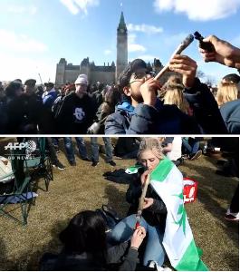 ニュース textream カナダが17日に娯楽目的の大麻を 解禁したそうですね