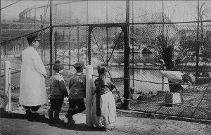 ちょっと、竹島に行ってくる! 人間様が食べる食糧も不足して、多くの人が空腹に泣かされていた             飼料不足による
