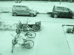 なんとなく写真 風邪が中々治りません A型もB型もなってます こちらも数年前の雪の写真です。
