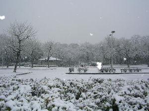 なんとなく写真    降りそうで降らない大阪の雪、雪景色    大雪は迷惑だけでウンザリですね         数年
