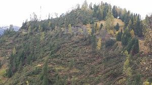 みんなでドロミテへ行こう! 11月の初めにイタリア北部を襲った豪雨・暴風による被害はベニスのアクァ・アルタがニュースで報じられま