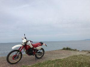 T.R.Tのメンバー連絡よこせ(2) 山も川も行ったので今日は海、肉眼だと粟島が綺麗なんだけどさ!