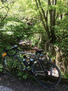 OO 自転車に乗ろう3 OO 新緑の八王子の山の中の次は、裏高尾の日影沢林道、なかなか素敵です(o^^o)