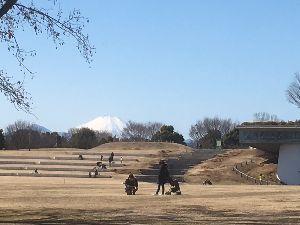 OO 自転車に乗ろう3 OO でも後ろを振り向いたら青空に富士山はが・・・  それで富士山を追って暫し昭和記念公園をさ迷い、、、