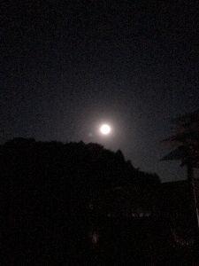 福岡発~1968年生まれ 綺麗な月ですねー🌕