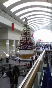 (^.^)y-~~~ちょい暇♪ -_-)ノ ヨッ 久し振り~~~!! 耕作、琴、、、元気かぁ?  それぞれのクリスマス・・・・ クリ