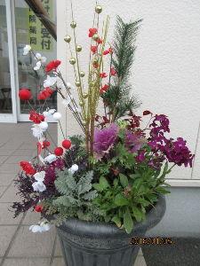 庭の花で四季を楽しむことに・・・ 今日は晴れ上がり穏やかな小春日和に・・・  出かける用事もなく炬燵でのんびりコーヒータイム・・・