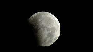 野草に関する情報をお寄せください! 見ちゃいました、月食を。  夜中 消防車のサイレンが聞こえたので 時間を見たら 欠けている・・・ で