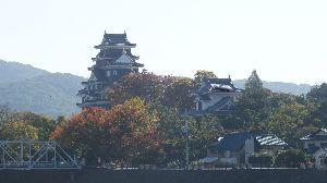 野草に関する情報をお寄せください! 立冬も過ぎ 平地でも 紅葉が始まりました。  写真は 岡山城です、お城に行ったのではなく 近くへ行っ