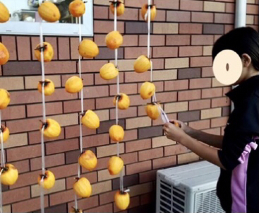 4582 - シンバイオ製薬(株) シンバイオは渋柿ですか♪  渋柿は落ちる前に収穫してあげて皮を剥き軒下に吊るして時を待つ・・美味しい
