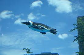 7725 - (株)インターアクション デイトレのペンギンの胸のタイマーが赤く点滅してます。  1295を越えないと、飛びます。