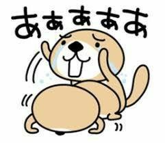 ダックス株研究会(会員制) 吾輩も 致命傷であーる ╭(;ŎдŎ)╮