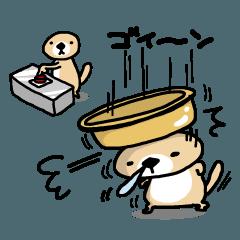 ダックス株研究会(会員制) 😡