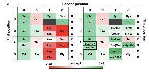 4587-PEPTIDREAM研究会(中・長期ホルダー専用)短期・売り煽り禁止!!  Display Selection of Exotic Macrocyclic Peptides