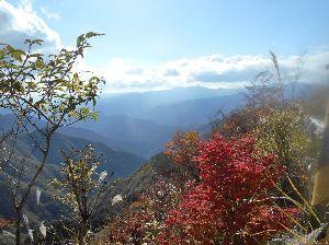 チョイ悪(かなり)ジジ  ババライダー 今晩は らくちゃんデス、 今日 奈良県吉野郡上北山村の 大台ヶ原の紅葉に行って来ました、 近畿圏では