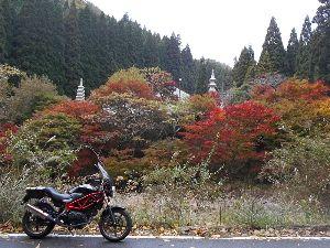 チョイ悪(かなり)ジジ  ババライダー 今晩は らくちゃんデス、 紅葉前線 徐々に下がって来てます。 写真:兵庫県篠山市・篭の坊の紅葉
