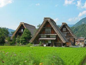 6月〜7月 北海道一人旅  北海道のこと教えて下さい m(_ _)m ナナさん、おはようございます~♪  いつも色々なこと お疲れさまです。m(_ _)m 休日出勤をこな