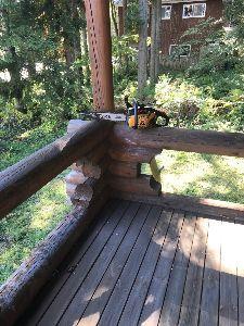 6628 - オンキヨーホームエンターテイメント(株) 久々の晴れの休日☀ オンスレの合い言葉通り 木を切りまくった