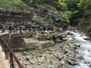 温泉同好会  人間が入る温泉とは違うのですが、 コマーシャルにも出ていた猿が入る温泉です。 長野県の渋温泉の奥に