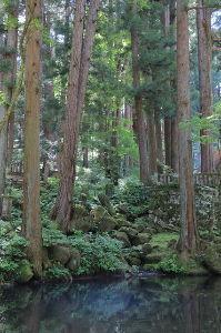 飯田下伊那地方の60歳以上の男女集まれ 大阪の地震 怖いですね 被害が出ないでくれるといいのですが。。 kenさんのところは大丈夫でしたか?