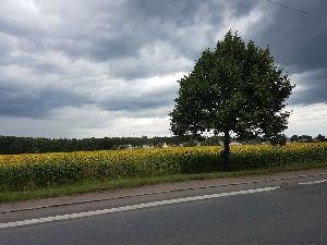 <ラウダ航空> 7月11日から17日にかけてチェコ、ドイツを回ってきました。 チェコは今回プラハ市内には寄らずに少し
