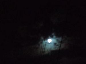 45歳以上~^^ 今晩は今日は中秋の名月ですねーー箱根山から出てきました