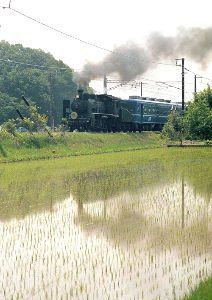 フイルムカメラ日記 (たまにデジカメ) 1ヶ月程前に滋賀県に行って汽車見物。 見物が目的のため、しっかり写真撮ろうとは思って いないのだが、