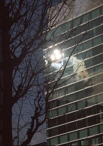 フイルムカメラ日記 (たまにデジカメ) おおよそ半世紀前のオールドレンズにて、 見上げればガラスの反射に複数の太陽が見えて。 反射光といえど