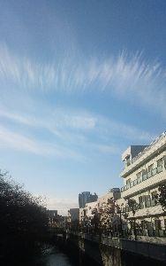 猫の夢語り 今日はいい天気でした 朝、駅に向かう途中きれいな雲に出会い 思わずシャッターを切ったのですが 急いで