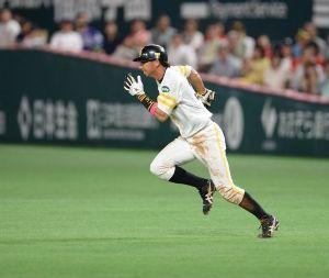 大きく羽ばたけ!福田秀平#37 昨日の巨人とのオープン戦で、3安打猛打賞の大活躍(^^♪   今季は内川の一塁コンバートにより、外野