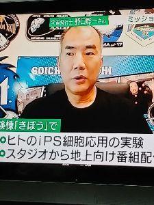 4978 - (株)リプロセル おばんどす🥰✌️  先程、NHKニュースで  野口宇宙飛行士のミッションは? ISSでiPS細胞を使