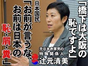 ほらほらハシシタさん始まってしまいました 国会の議事録は未来永劫残る第一級の歴史的資料です!!           歴史に対する日本政府・国民