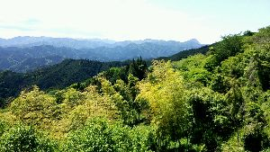 埼玉LIFE【新館】 こんにちは  残念だったよー  武甲山 わかるかな?  右の隅です