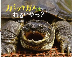 8411 - (株)みずほフィナンシャルグループ パー君、キミのこと、「咬みつきガメ」ちゅうねん!!