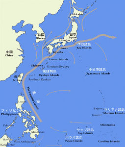 seibutsugakuhakaseの生物学何でも質問箱 質問! カツオはフィリピン沖の大陸棚で生まれ、黒潮に乗って日本までやって来ます。日本に到着したカツオ