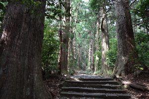 北海道=奈良 友達の わっ!ヽ(^○^)ノ こんばんは~ 足の調子が今一のままで山登りも出来ないので 歩いてリハビリする事に でもただ歩くだけじ