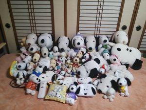 暇かな?! 私は、今、友達が居ません。  2011年石川県ボディービル選手権大会のDVD&ジェイカトラー