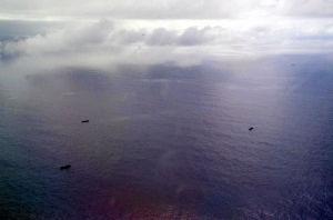 ■日雇い派遣は禁止してはいけない! 小笠原周辺に中国漁船?      113隻確認      サンゴ密漁目的か     2014年10月