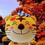 定年退職「ご苦労さま」でした! こんにちは~(^-^)v 午後からは、此方どんより曇っていて降りそうで降らない空模様です。 今日は秋