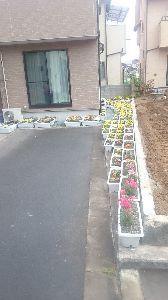 ●・見たい?見せたい? こんにちは  今年は、隣家→更地→新築8月初完成  なので、わあ、花壇、はてさて