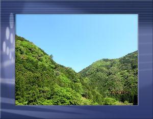 とうとうやってきました・・・・・ 爽やかな風が吹き抜ける初夏の陽気に・・・  馴染みの里山まで湧水を汲みに一走り・・・  2Lのペット