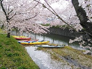 漕ごう!九州の海と川 ガイドのお手伝いをしてきました