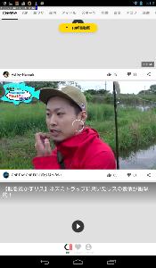 泥棒猫侵入の記録 TopBuzz Videoがグルグル回る。また在日朝鮮族グループによる電波(業務)妨害か?(^o^)