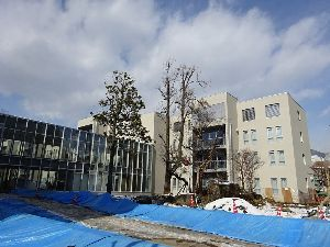 後町小を忘れない 冬の長野市、関東暮らしが長くなって寒がりになり、 両親が亡くなったこともあって、正月の帰省も無し。