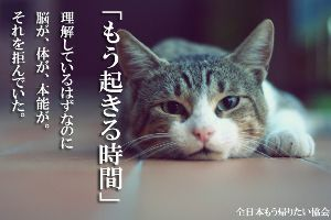 4901 - 富士フイルムホールディングス(株) みんな朝から元気だな。