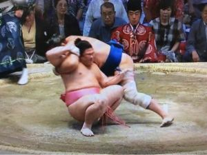 いろいろなスポーツについてのひとりごと。 今日はスポーツファンにとっては、楽しい1日になりそうです。 まず大相撲春場所の初日。 新横綱・稀勢の