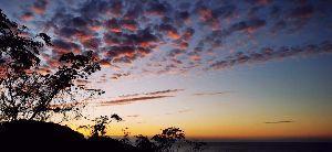 (*^^)ゆっくり、のんびり、マイペース♪ 今朝は四季報チェックの朝彡(*^ー^*)☆ ★13日の金曜日~(@▽@;;  全般、小型株の外人比率