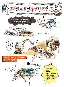 1357 - (NEXT FUNDS) 日経ダブルインバース上場投信 頭が悪い人にはこうゆう方がわかりやすいかな